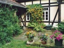 Urlaub / Übernachtung am Elberadweg in Dresden - ruhig gelegenes Ferienhaus mit großem Garten